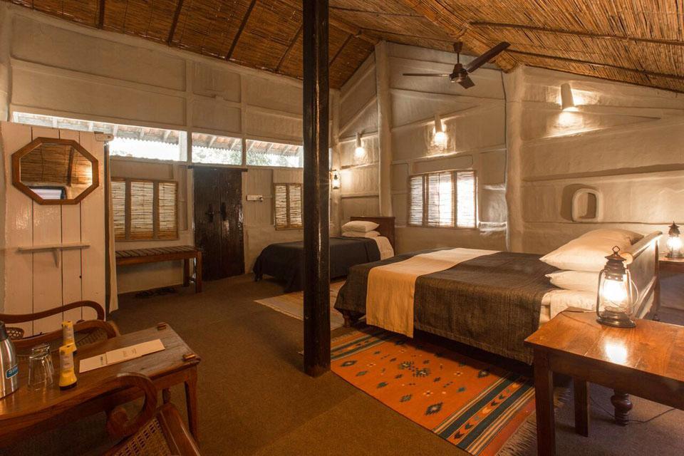 Tiger Tops Tharu Lodge Safari | 3 Days - Trek Guiders